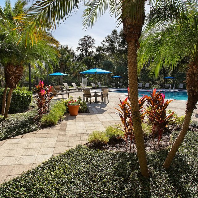 Apartments In Westchase Fl: Cypress Grand Apartments For Rent